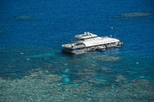 Great Barrier Reef Mooring ǀ Pontoon Mooring ǀ Tim North Marine