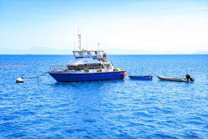 Workboat Hire Cairns ǀ Dive boat Charter ǀ Liveaboard Support Vessel ǀ Tim North Marine