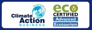 ISO Accredited and Eco Certified Commercial Dive Company in Cairns, Queensland Australia