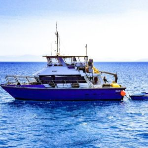 Vessel Hire Company in Cairns, Queensland Australia | Viking is the perfect dive support vessel charter