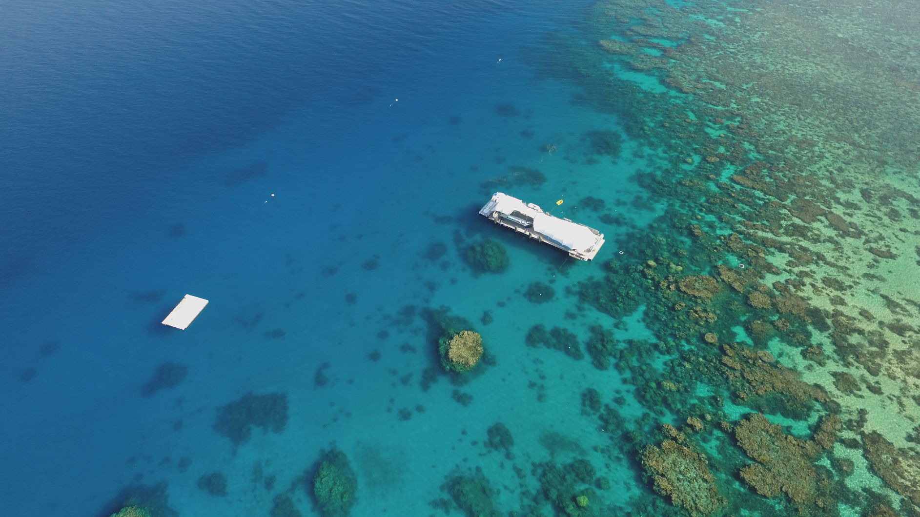 Quicksilver Pontoon Tow – Great Barrier Reef to Port of Cairns, QLD